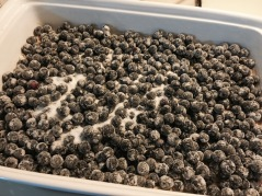 Sugared fresh blueberries