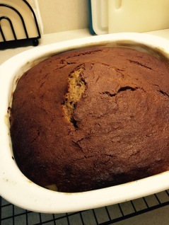 Browned and cracked gingerbread