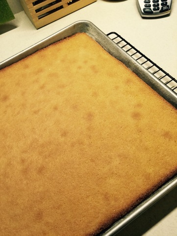 A simple sheet cake