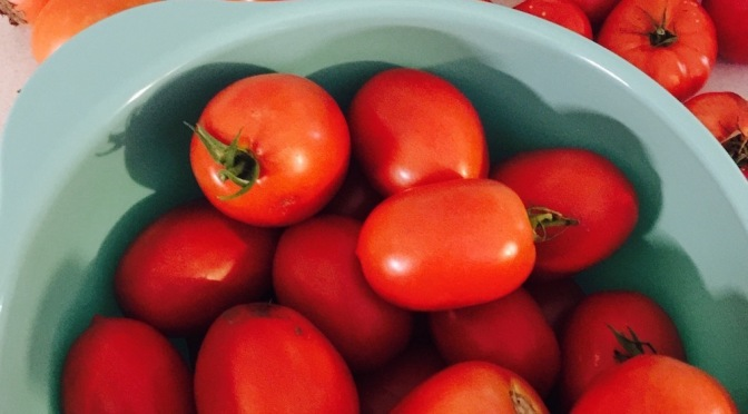 Cooking Up the Summer Harvest—Tomatoes